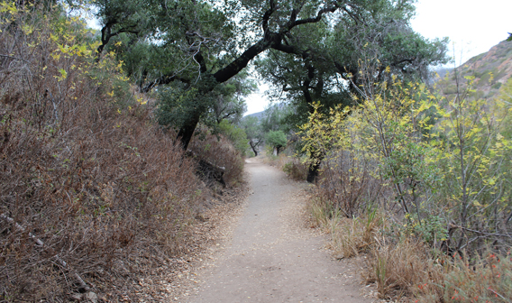 Solstice Canyon Trail - California